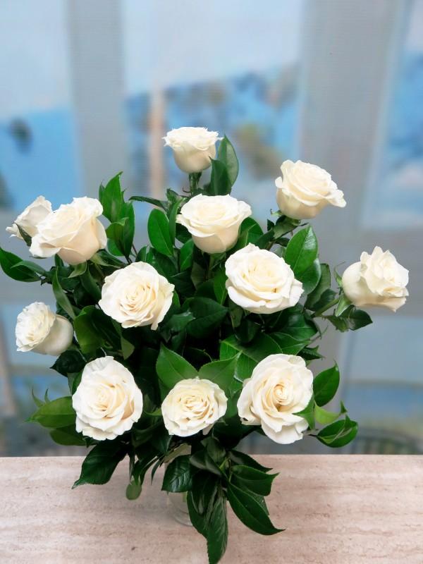 Ramo de 12 rosas Blancas Tallo largo 70 cm.