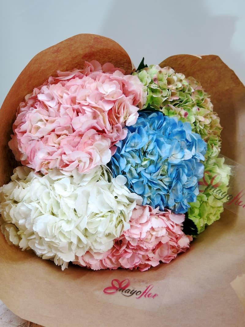 Flores de Hortensias  OFERTA ESPECIAL HOY