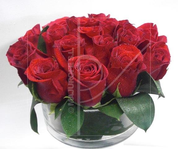 18 Rosas de tallos corto en centro