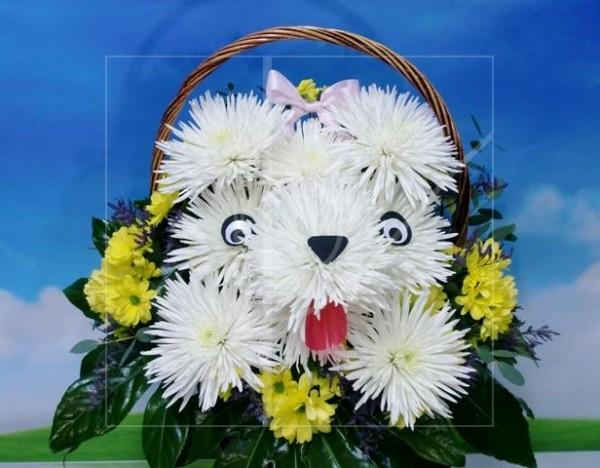 Perrita de Flores naturales en cesta