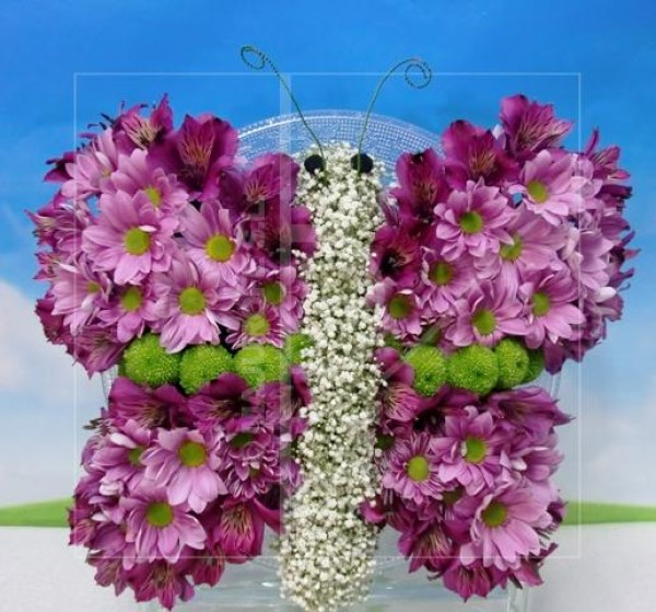 Mariposa de flores naturales
