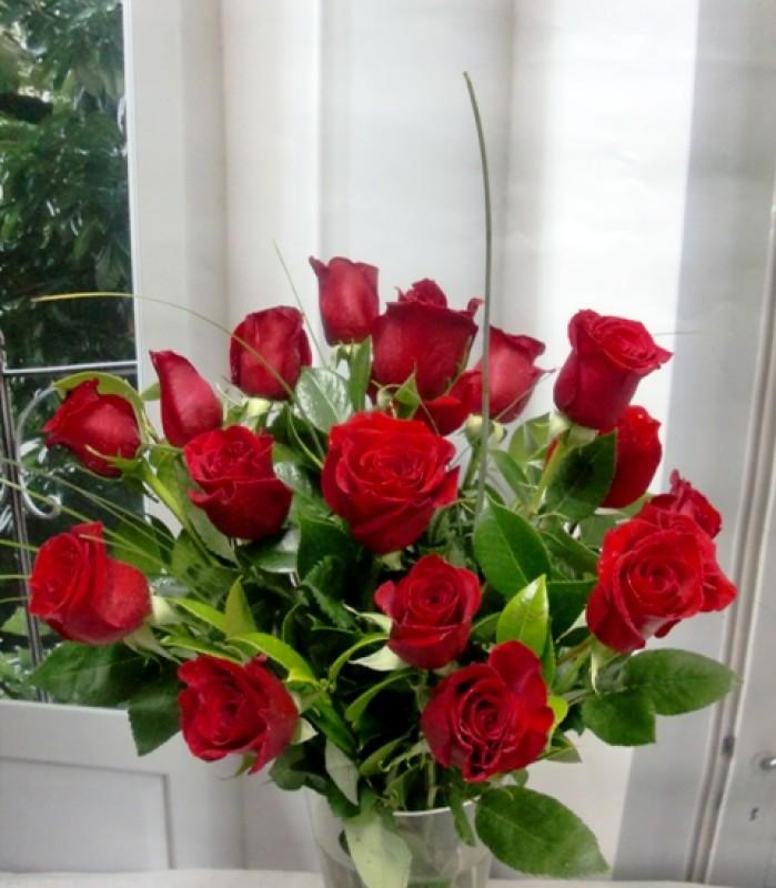18 Rosas de Tallo Corto