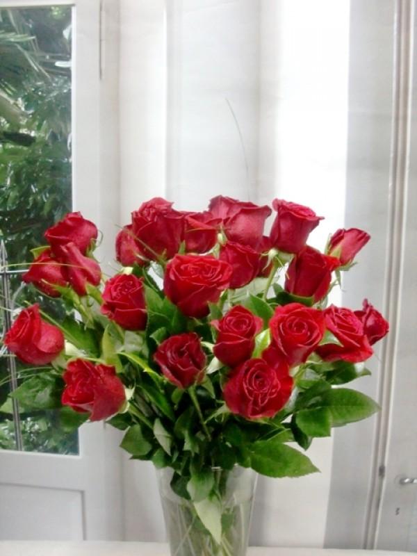 Ramo de 24 rosas de tallo corto 50 cm.