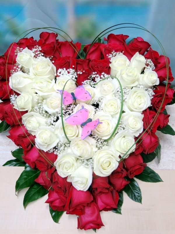 EL Corazón de 70 Rosas. Regálaselo