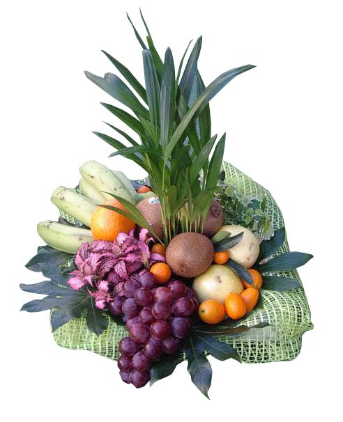 Cesta de plantas y frutas. Combinación Perfecta