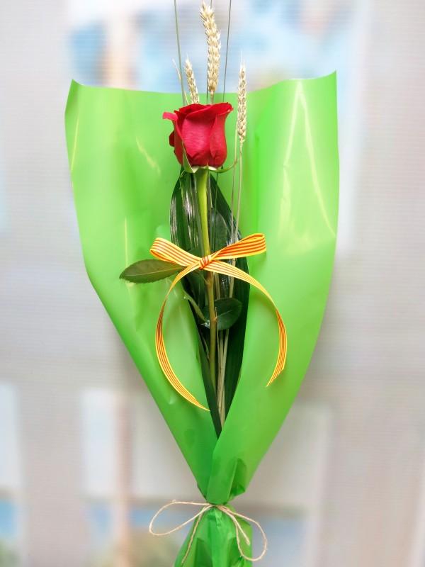 Día de la rosa. Tu pones el libro y nosotros la Rosa