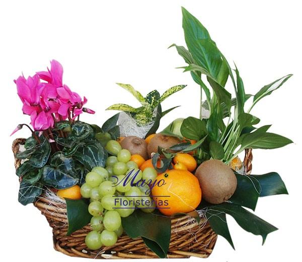 Cesta de frutas con plantas.