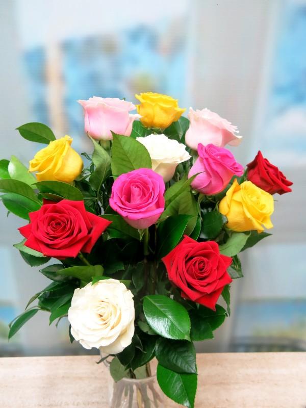 Ramo de 12 rosas Variadas Tallo corto 50-60 cm.