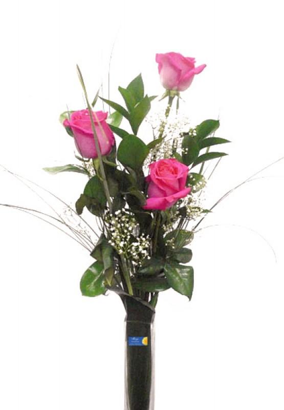 3 Rosas - Foto principal