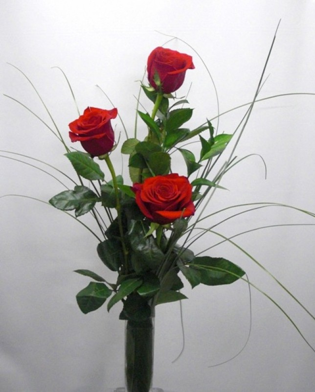 3 Rosas tallo largo. - Foto principal