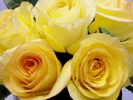 20 Rosas en recipiente de cristal - Foto 3
