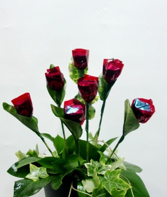 Rosas de chocolate - Foto principal