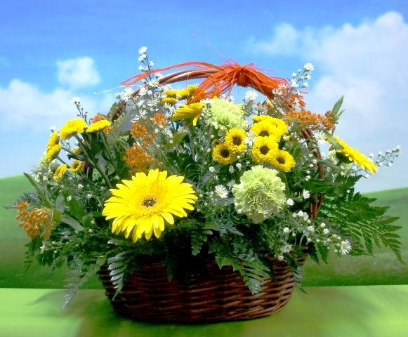En amarillo. Cesta de Flor variada - Foto principal