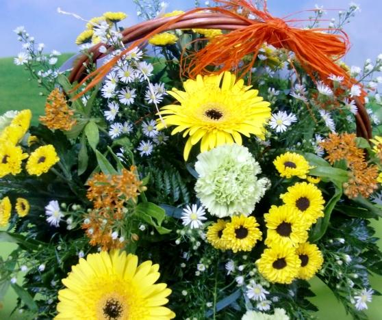 En amarillo. Cesta de Flor variada - Foto 2