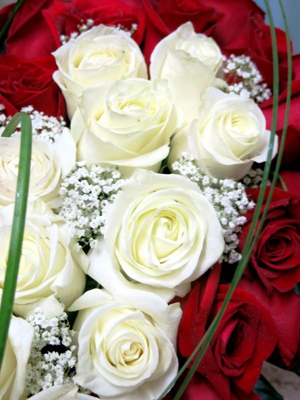 EL Corazón de 70 Rosas. Regálaselo - Foto 4