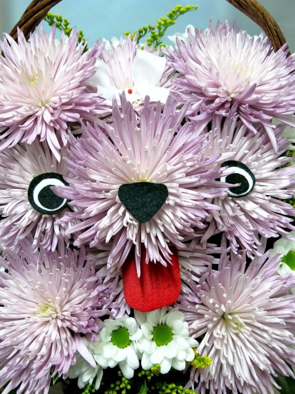 Perrita de Flores naturales en cesta - Foto 3