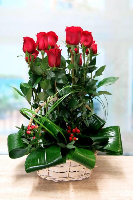 Rosas en Cesta - Foto 2