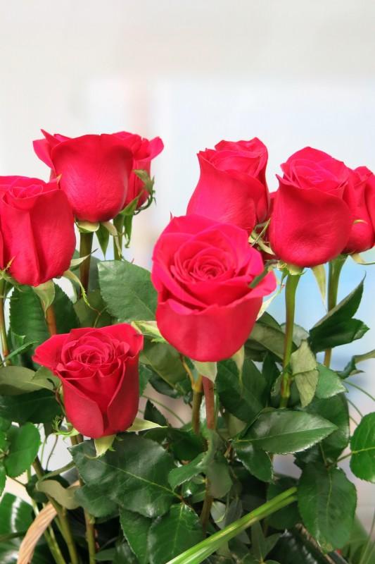 Rosas en Cesta - Foto 4