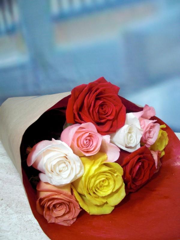 Rosas variadas 10 tallos - Foto principal