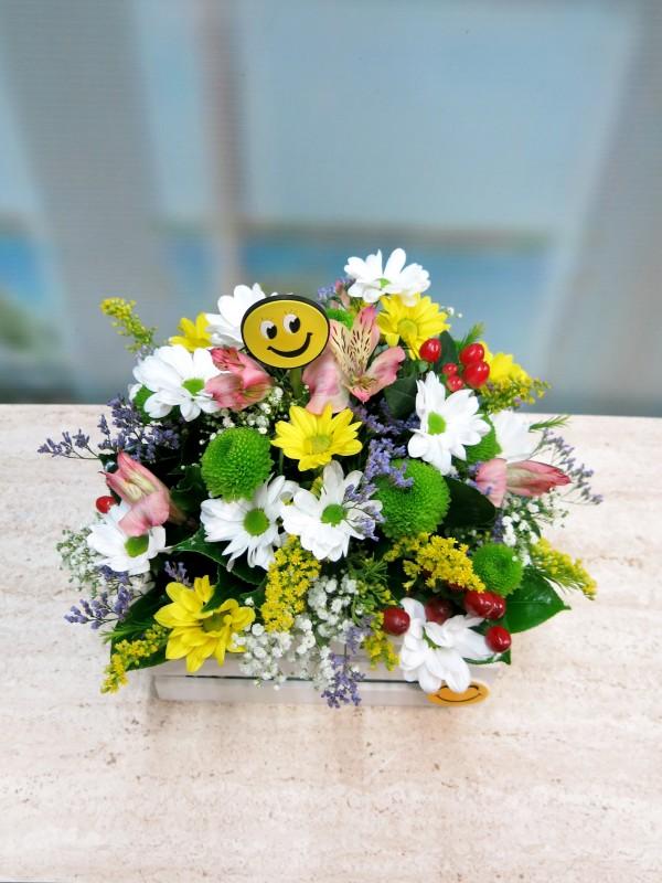 Regala Primavera y Alegría - Foto 4