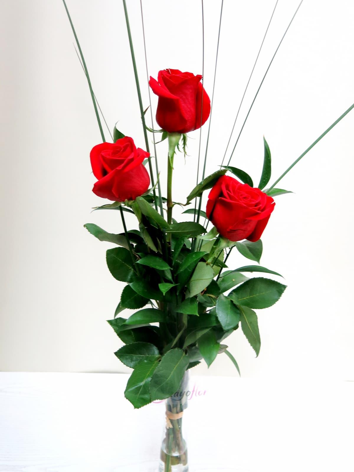 3 Rosas tallo largo - Foto principal