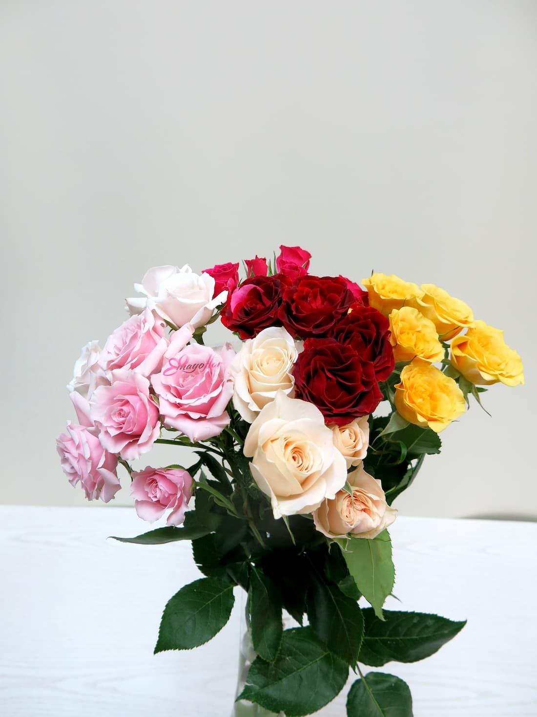 Rosas ramificadas variadas - Foto principal
