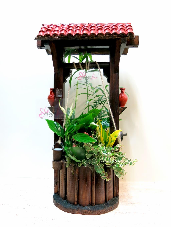 Plantas naturales en Pozo - Foto 2
