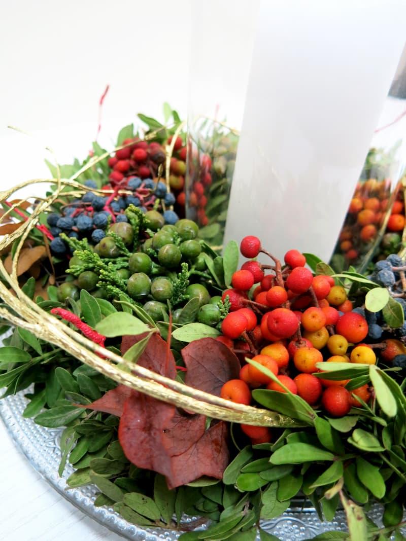 Centro de Frutos silvestres Para todos - Foto 2