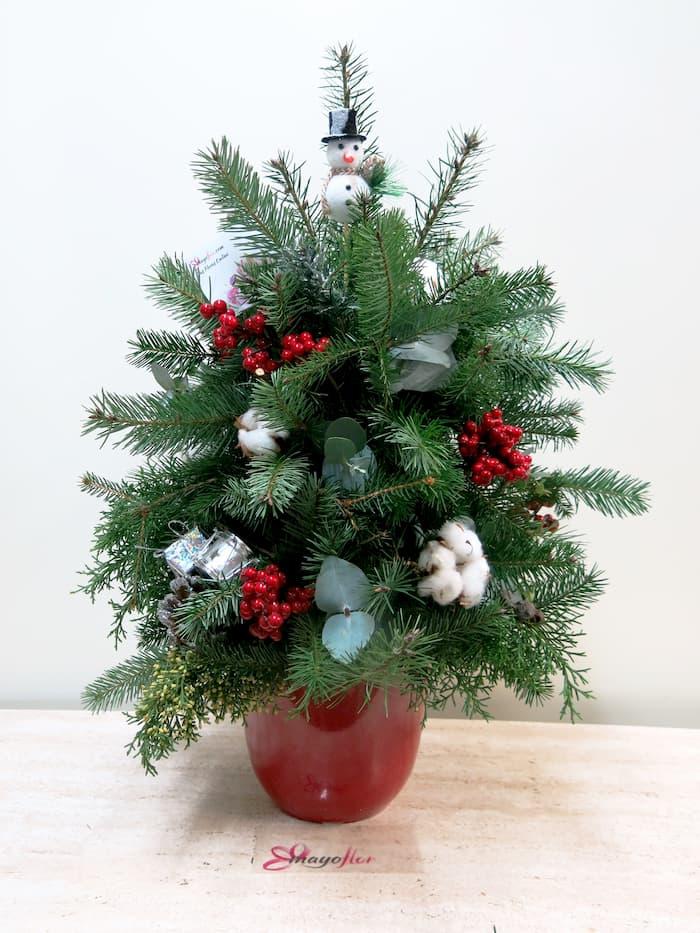 El Árbol de Navidad - Foto principal