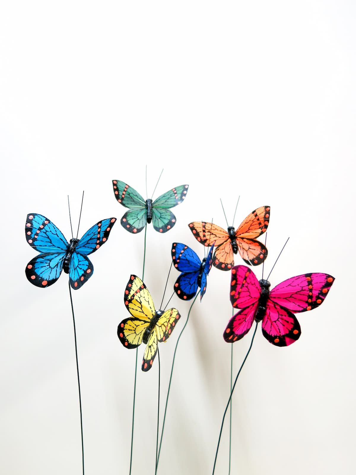 Mariposas - Foto 3