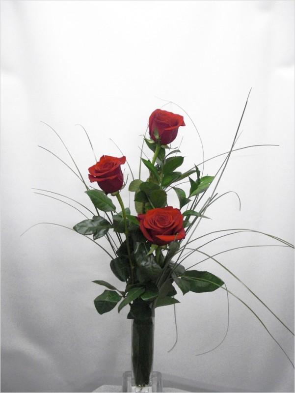 3 Rosas Rojas de color rojas