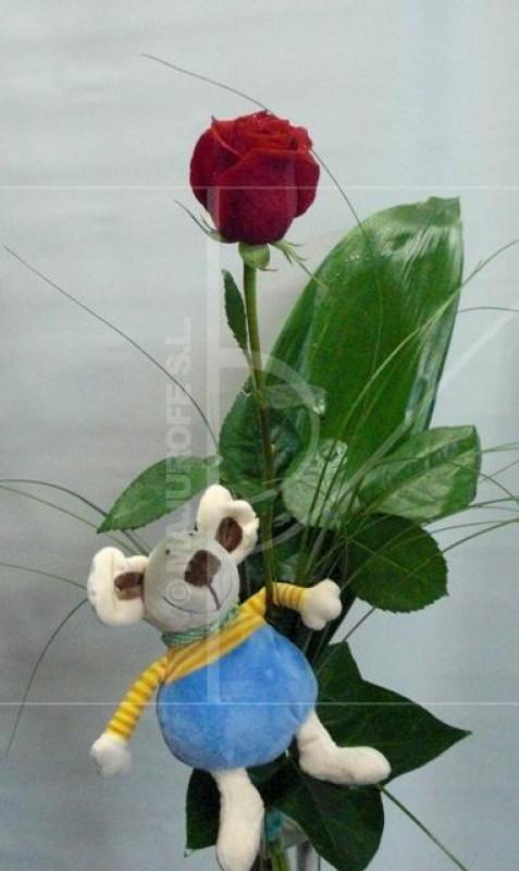 1 Rosa Roja con Peluche de color roja