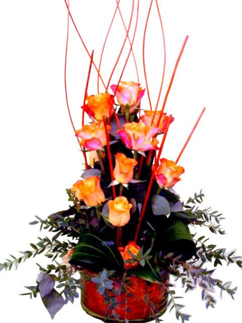 Rosas Para sorprender de color naranja