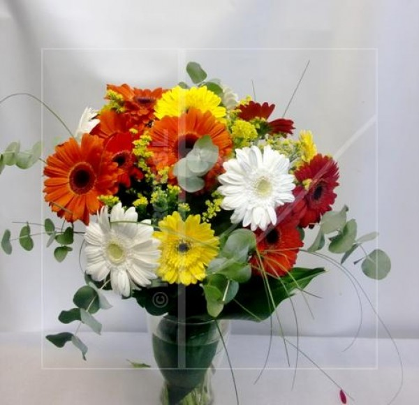 Bouquet of Gerberas varied in color - Foto principal