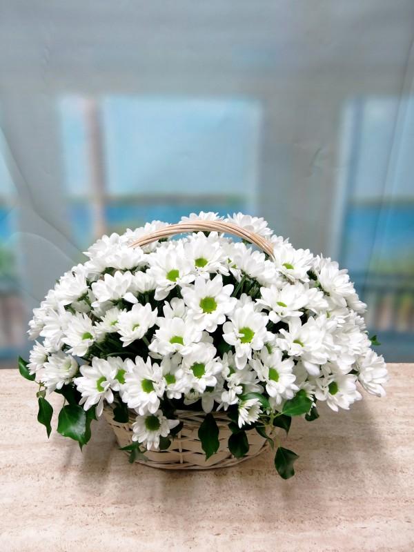 White daisies in basket - Foto principal