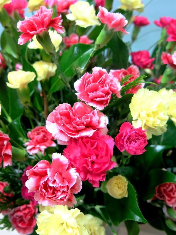 Bouquet of mini carnation flowers - Foto 3