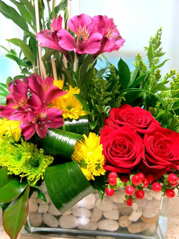 Flores de mi Jardín - Foto 4