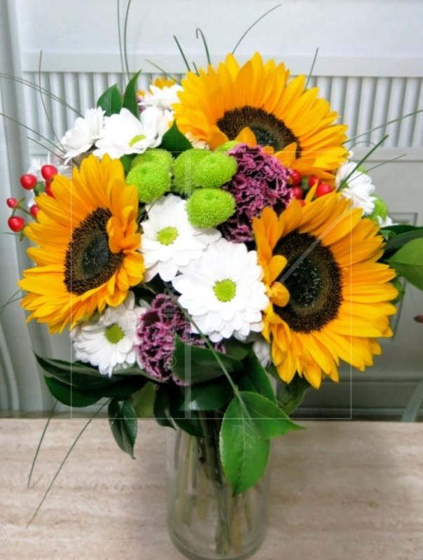 What a great combination: Sunflowers and Daisies - Foto principal