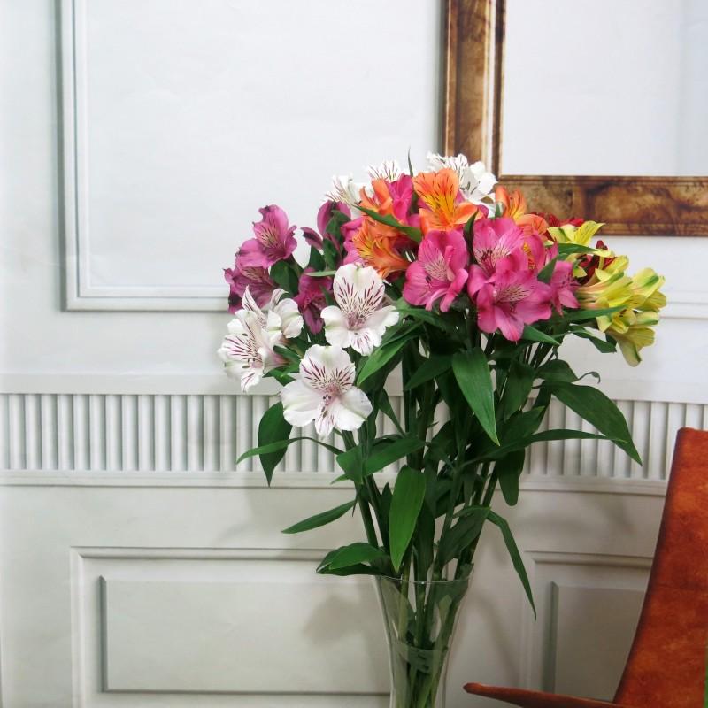 Alstroemerias variada 6 tallos Oferta especial de flores - Foto 4