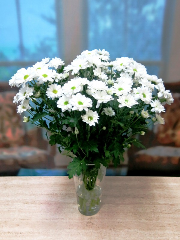 GIFTS White daisies 10 stems - Foto 4