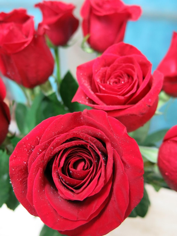 Red roses for 10, 20 or 30 stems - Foto 3