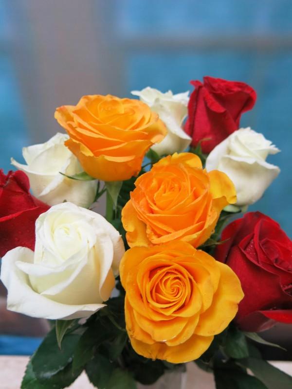 Rosas variadas 10 tallos - Foto 2