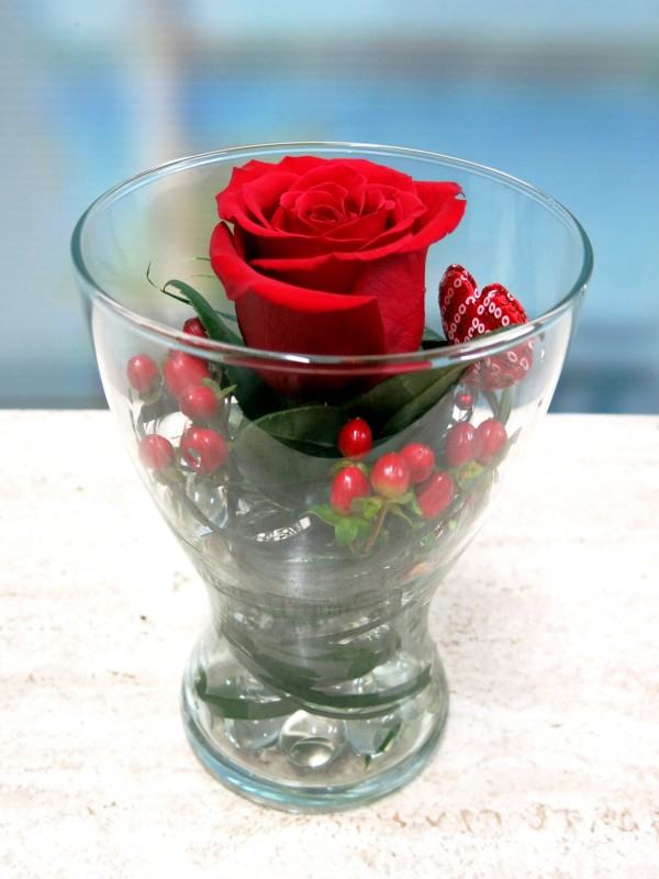 Rose in a Vase - Foto principal