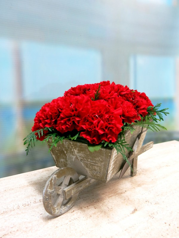 Carretilla de claveles centro de flores naturales - Foto principal