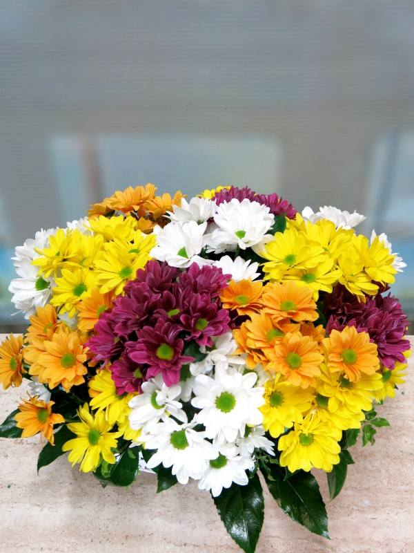 Basket of assorted daisies - Foto 2