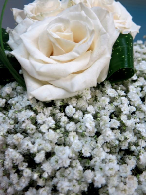Corazón de Rosa y Paniculata - Foto 4