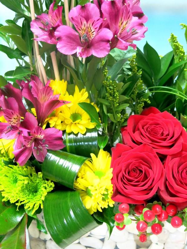 Flores de mi Jardín - Foto 3
