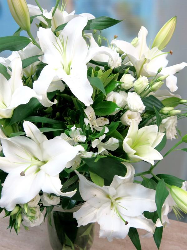 Lilium Oriental 5 tallos. de color blanco