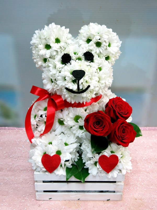 The Roses are brought by the teddy bear made of white daisies. - Foto principal