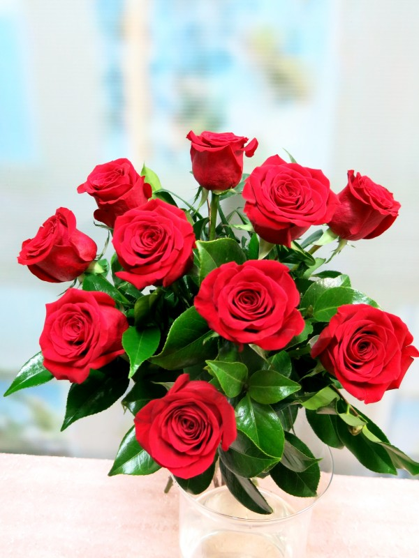 Bouquet of 10 roses prepared for gift - Foto principal